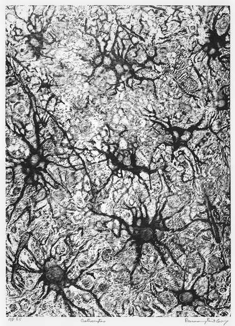 "Rosemary Feit Covey, ""Astrocytes"", wood engraving"
